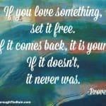 If You Love Something, Set It Free
