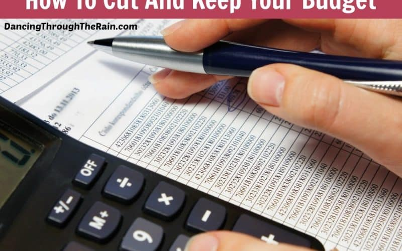 Cost Cutting Ideas – How To Cut And Keep Your Budget