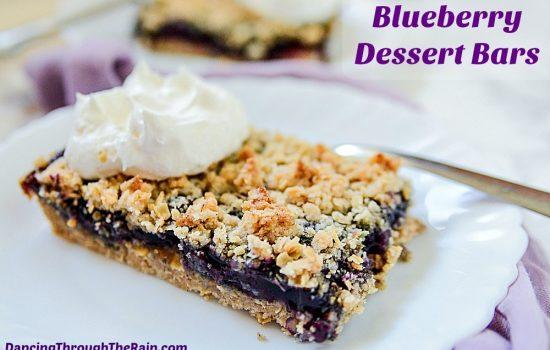 Blueberry Dessert Bars