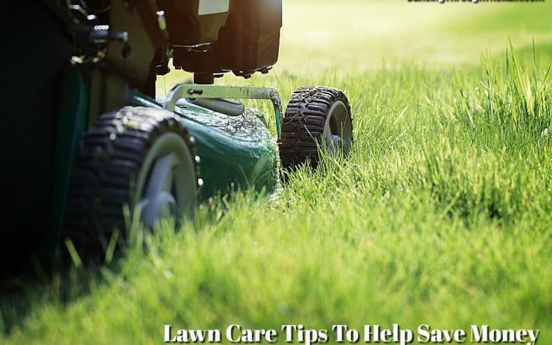 Lawn Care Tips To Help Save Money