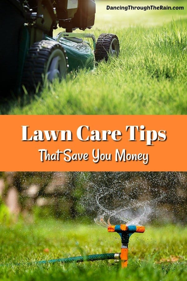 Lawn care maintenance takes a lot of time and money, but it doesn't have to! Use these lawn care tips to lighten the load on your week and your wallet!