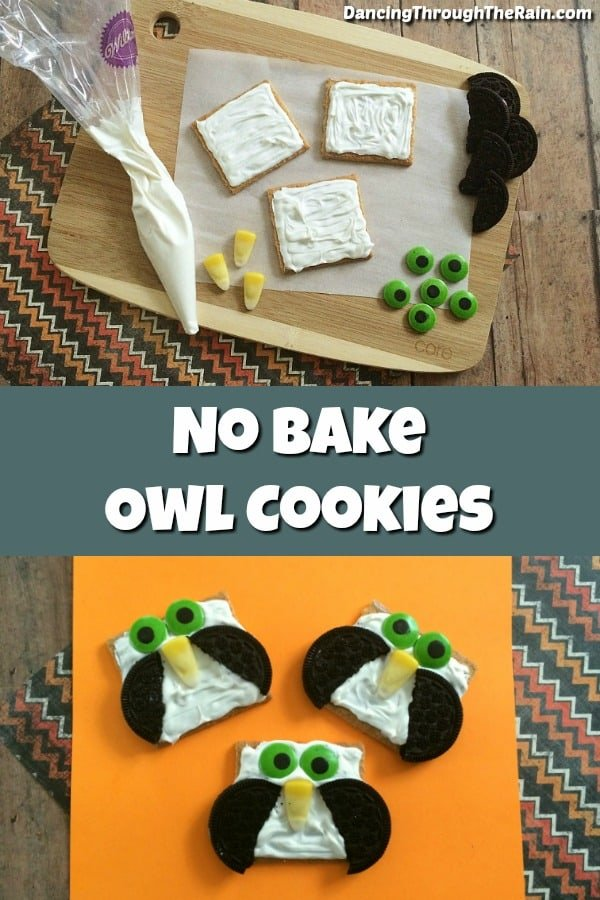 No-bake recipes are the best when you want to make something quickly, and these no-bake owl cookies are also super cute! Perfect as bake sale treats or classroom cookies, everyone will think they're adorable any time of year!