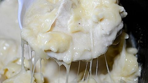 Crockpot Chicken Alfredo in the crock pot bowl