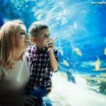 Cute Date Ideas With Your Kids In Spring